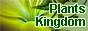 Plants Kingdom: Мир комнатных растений